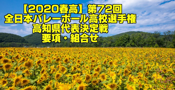 【2020春高】第72回全日本バレーボール高校選手権 高知県代表決定戦 要項・組合せ