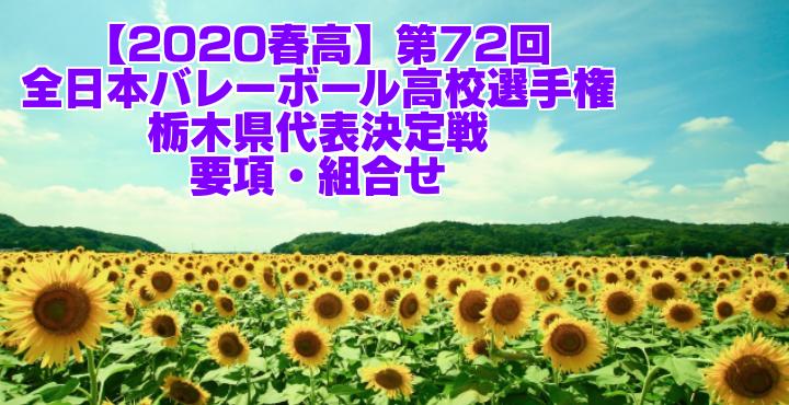 【2020春高】第72回全日本バレーボール高校選手権 栃木県代表決定戦 要項・組合せ