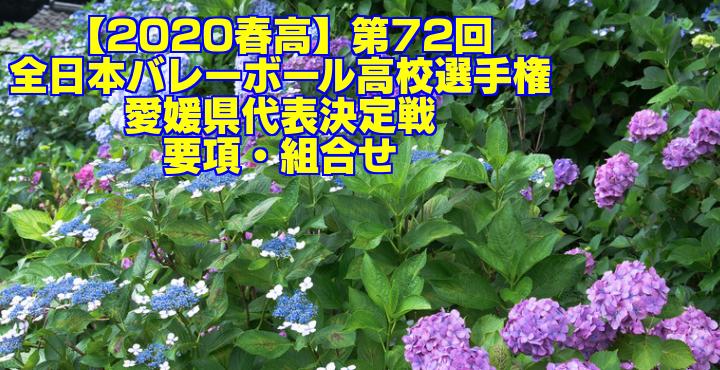 【2020春高】第72回全日本バレーボール高校選手権 愛媛県代表決定戦 要項・組合せ