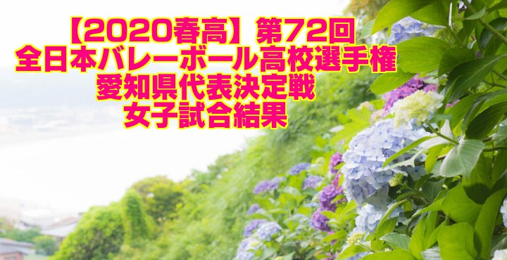 【2020春高】第72回全日本バレーボール高校選手権 愛知県代表決定戦 女子試合結果