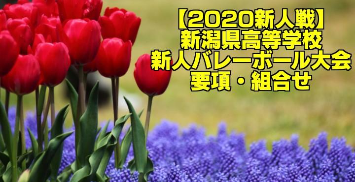 【2020新人戦】新潟県高等学校新人バレーボール大会 要項・組合せ