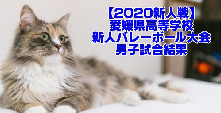 【2020新人戦】愛媛県高等学校新人バレーボール大会 男子試合結果