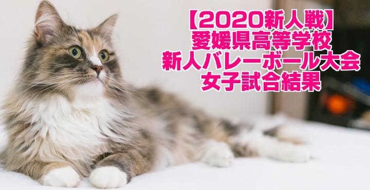 【2020新人戦】愛媛県高等学校新人バレーボール大会 女子試合結果