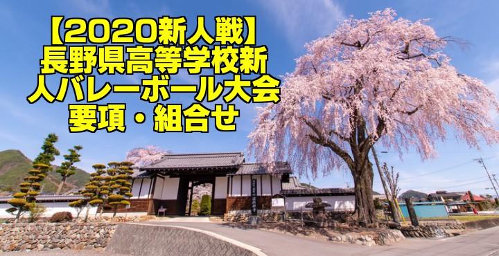 【2020新人戦】長野県高等学校新人バレーボール大会 要項・組合せ