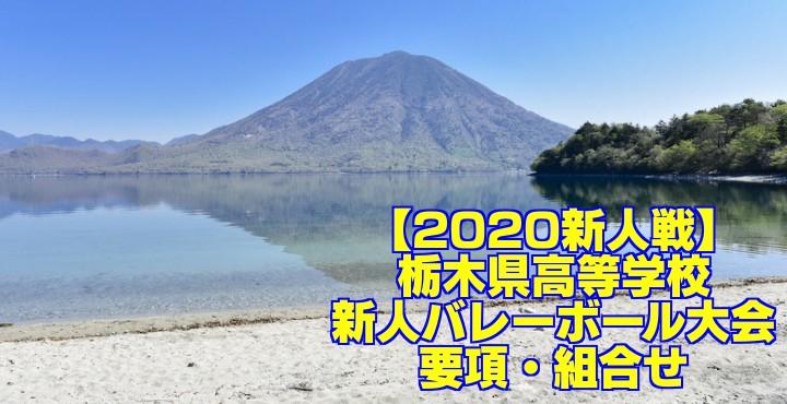 【2020新人戦】栃木県高等学校新人バレーボール大会 要項・組合せ