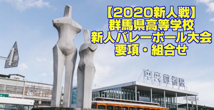 【2020新人戦】群馬県高等学校新人バレーボール大会 要項・組合せ