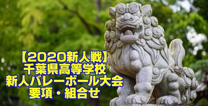 【2020新人戦】千葉県高等学校新人バレーボール大会 要項・組合せ