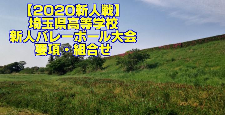 【2020新人戦】埼玉県高等学校新人バレーボール大会 要項・組合せ
