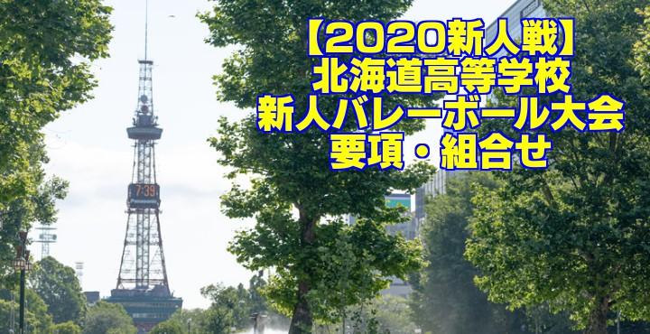 【2020新人戦】北海道高等学校新人バレーボール大会 要項・組合せ