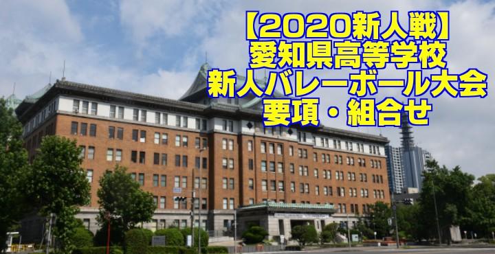 【2020新人戦】愛知県高等学校新人バレーボール大会 要項・組合せ
