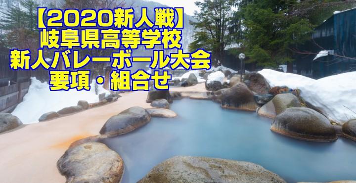 【2020新人戦】岐阜県高等学校新人バレーボール大会 要項・組合せ