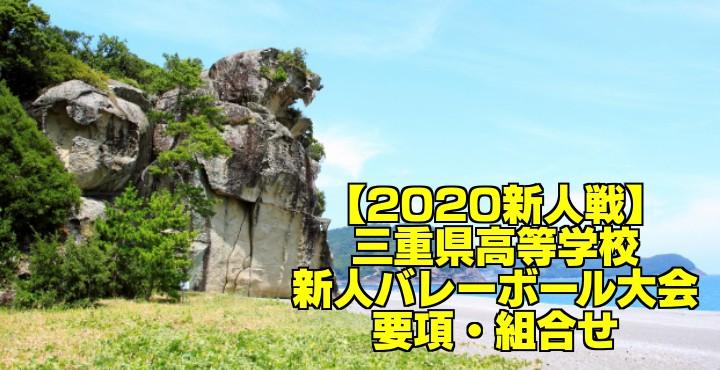【2020新人戦】三重県高等学校新人バレーボール大会 要項・組合せ