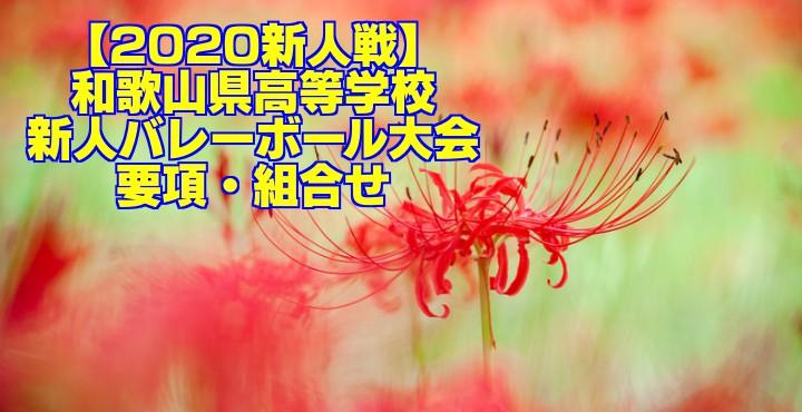 【2020新人戦】和歌山県高等学校新人バレーボール大会 要項・組合せ