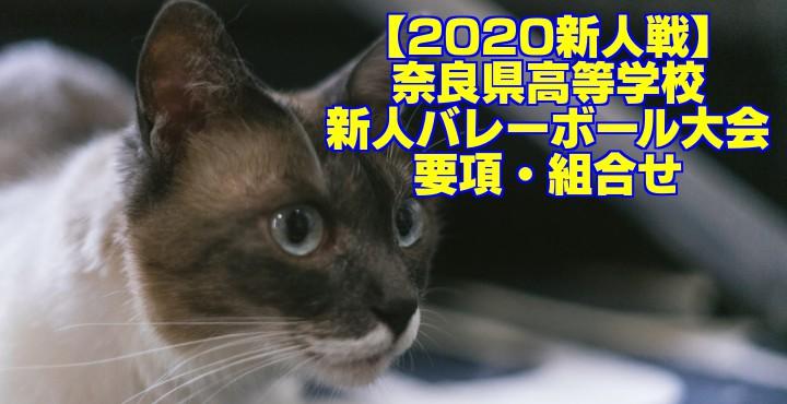 【2020新人戦】奈良県高等学校新人バレーボール大会 要項・組合せ