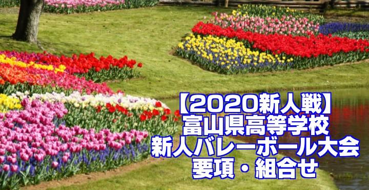 【2020新人戦】富山県高等学校新人バレーボール大会 要項・組合せ