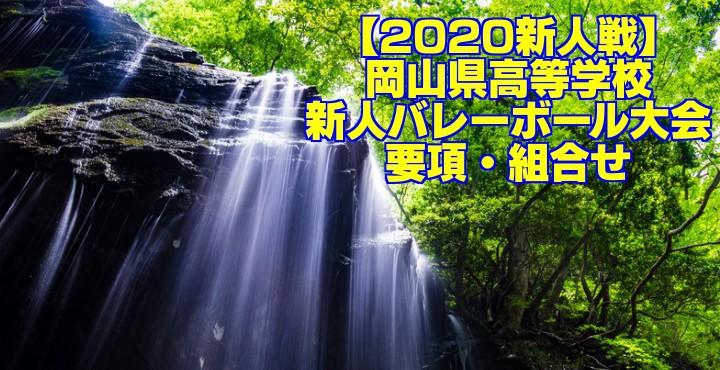 【2020新人戦】岡山県高等学校新人バレーボール大会 要項・組合せ