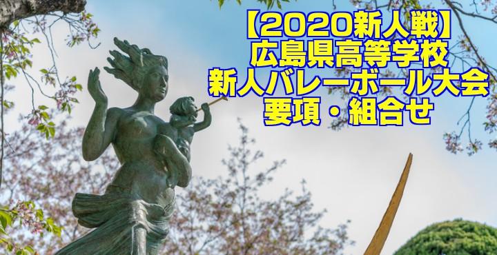 【2020新人戦】広島県高等学校新人バレーボール大会 要項・組合せ
