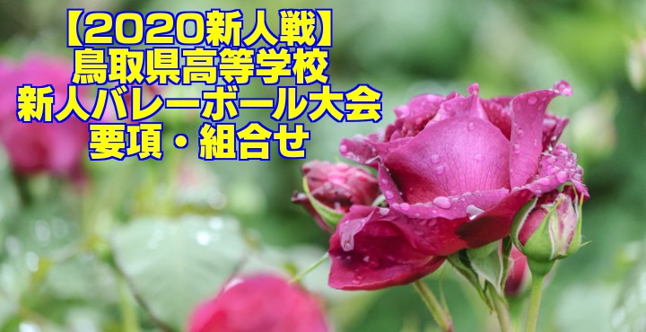 【2020新人戦】鳥取県高等学校新人バレーボール大会 要項・組合せ