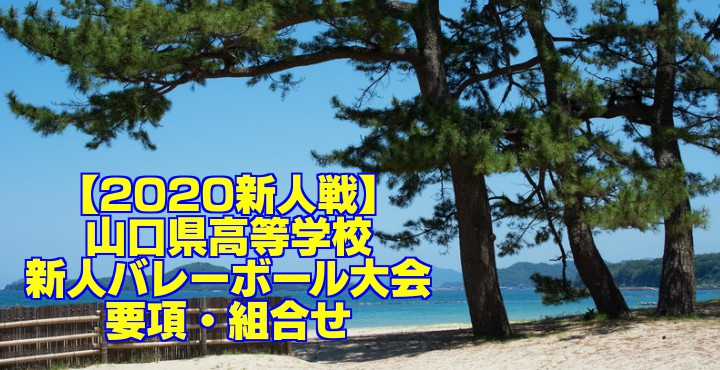 【2020新人戦】山口県高等学校新人バレーボール大会 要項・組合せ