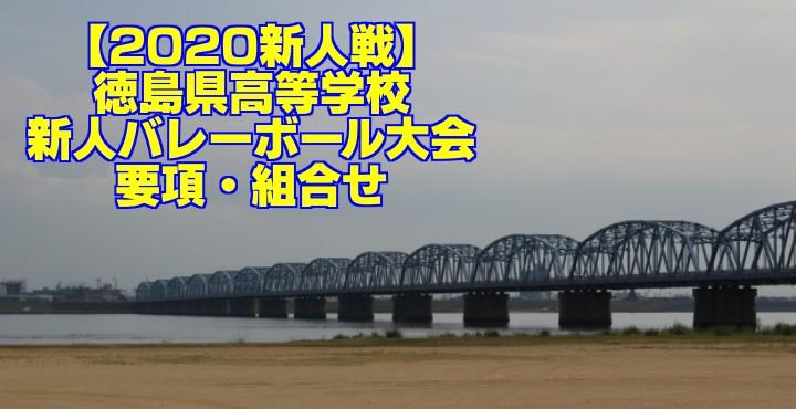 【2020新人戦】徳島県高等学校新人バレーボール大会 要項・組合せ