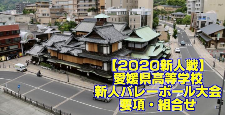 【2020新人戦】愛媛県高等学校新人バレーボール大会 要項・組合せ