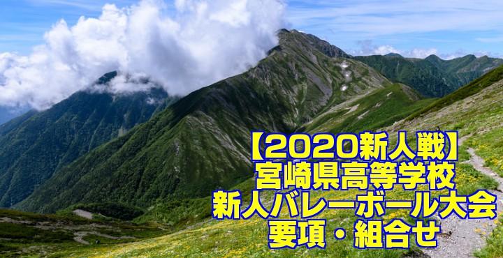 【2020新人戦】宮崎県高等学校新人バレーボール大会 要項・組合せ