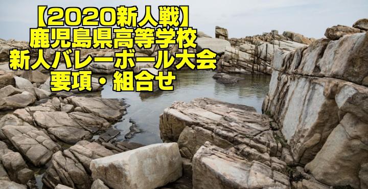 【2020新人戦】鹿児島県高等学校新人バレーボール大会 要項・組合せ