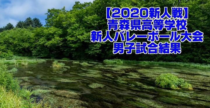 【2020新人戦】青森県高等学校新人バレーボール大会 男子試合結果