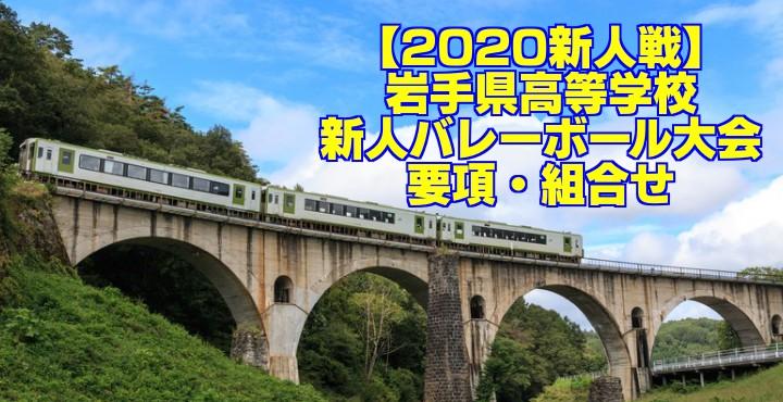 【2020新人戦】岩手県高等学校新人バレーボール大会 要項・組合せ
