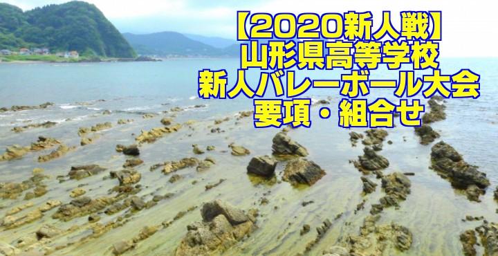 【2020新人戦】山形県高等学校新人バレーボール大会 要項・組合せ
