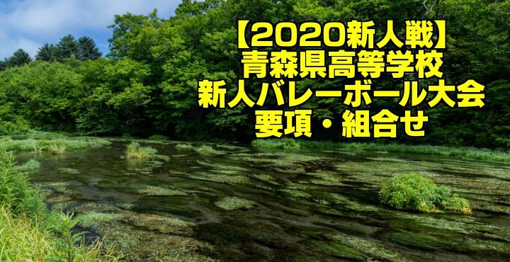 【2020新人戦】青森県高等学校新人バレーボール大会 要項・組合せ