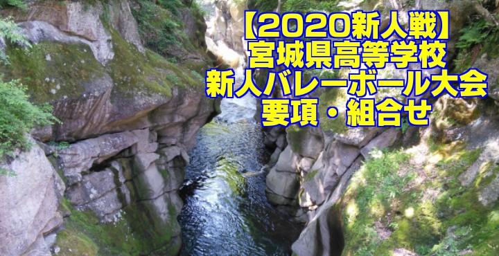 【2020新人戦】宮城県高等学校新人バレーボール大会 要項・組合せ