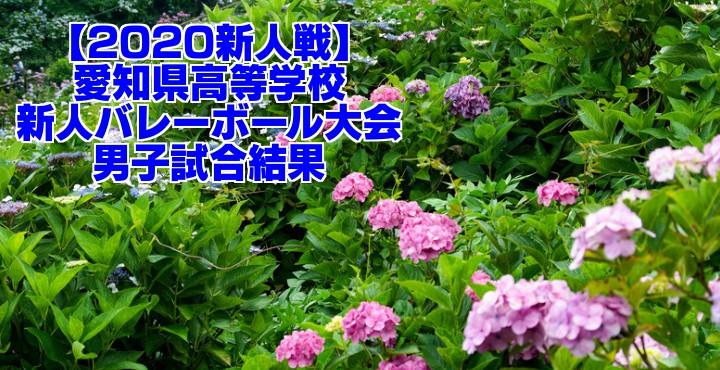 【2020新人戦】愛知県高等学校新人バレーボール大会 男子試合結果