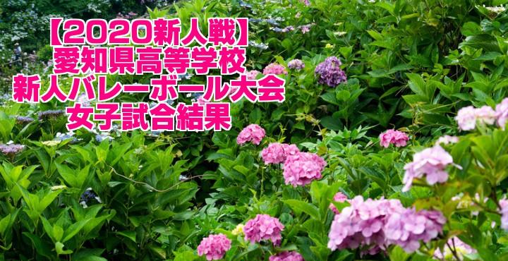 【2020新人戦】愛知県高等学校新人バレーボール大会 女子試合結果