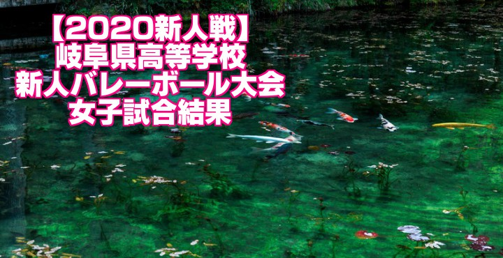 【2020新人戦】岐阜県高等学校新人バレーボール大会 女子試合結果