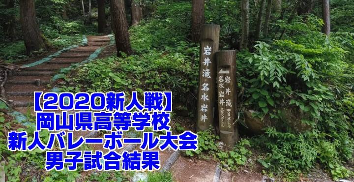 【2020新人戦】岡山県高等学校新人バレーボール大会 男子試合結果