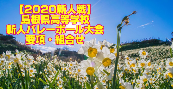 【2020新人戦】島根県高等学校新人バレーボール大会 要項・組合せ