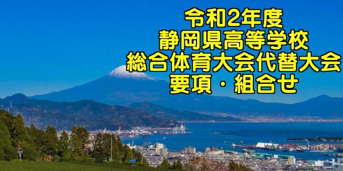 令和2年度 静岡県高校総体バレーボール代替大会 要項・組合せ