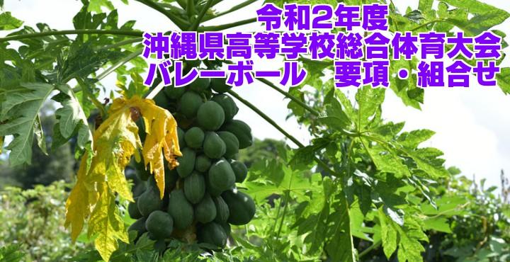 沖縄 県 高校 総体