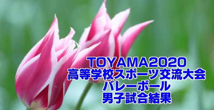 TOYAMA2020高等学校スポーツ交流大会(バレーボール) 男子試合結果