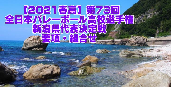 新潟 2021春高バレー県予選|第73回全日本バレーボール高校選手権大会 要項・組合せ