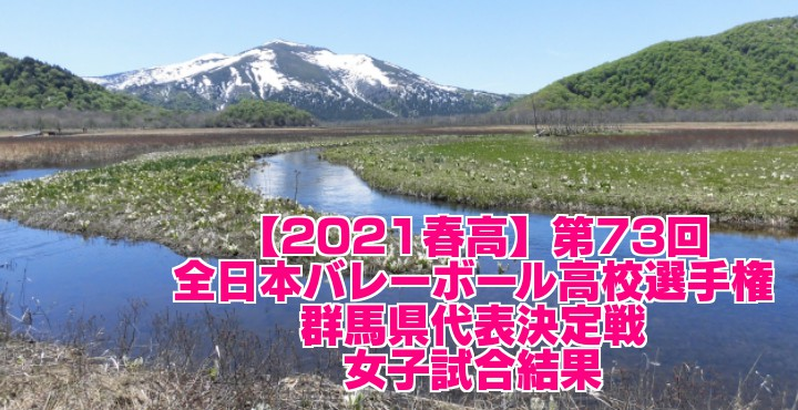 群馬 2021春高バレー県予選|第73回全日本バレーボール高校選手権大会 女子試合結果