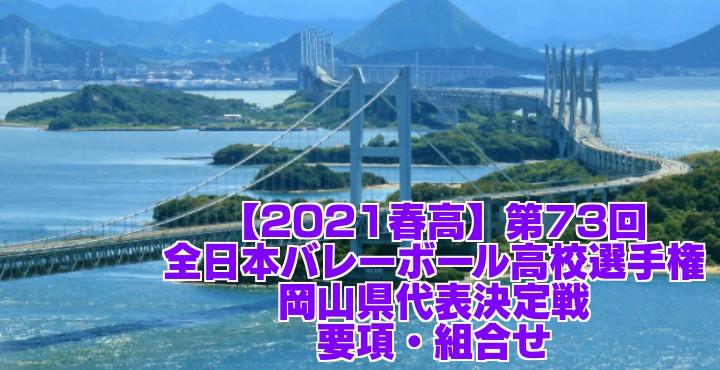岡山 2021春高バレー県予選|第73回全日本バレーボール高校選手権大会 要項・組合せ