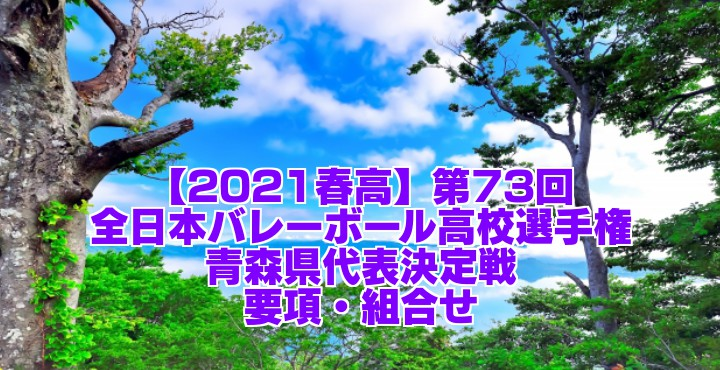 【2021春高】第73回全日本バレーボール高校選手権 青森県代表決定戦 要項・組合せ