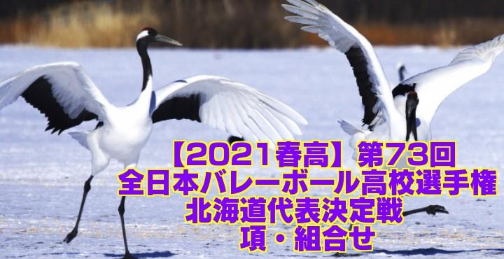 北海道 2021春高バレー県予選|第73回全日本バレーボール高校選手権大会 要項・組合せ