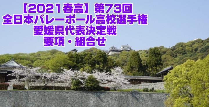 愛媛 2021春高バレー県予選|第73回全日本バレーボール高校選手権大会 要項・組合せ