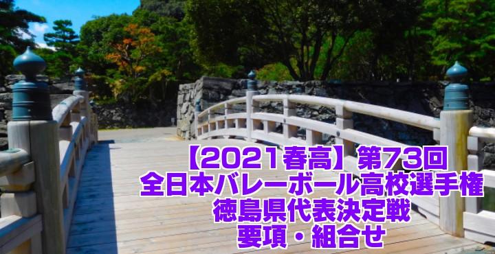 徳島 2021春高バレー県予選|第73回全日本バレーボール高校選手権大会 要項・組合せ