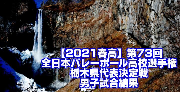 【2021春高】第73回全日本バレーボール高校選手権 栃木県代表決定戦 男子試合結果