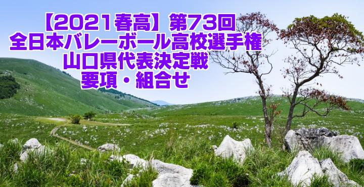 山口 2021春高バレー県予選|第73回全日本バレーボール高校選手権大会 要項・組合せ
