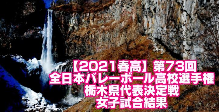 【2021春高】第73回全日本バレーボール高校選手権 栃木県代表決定戦 女子試合結果